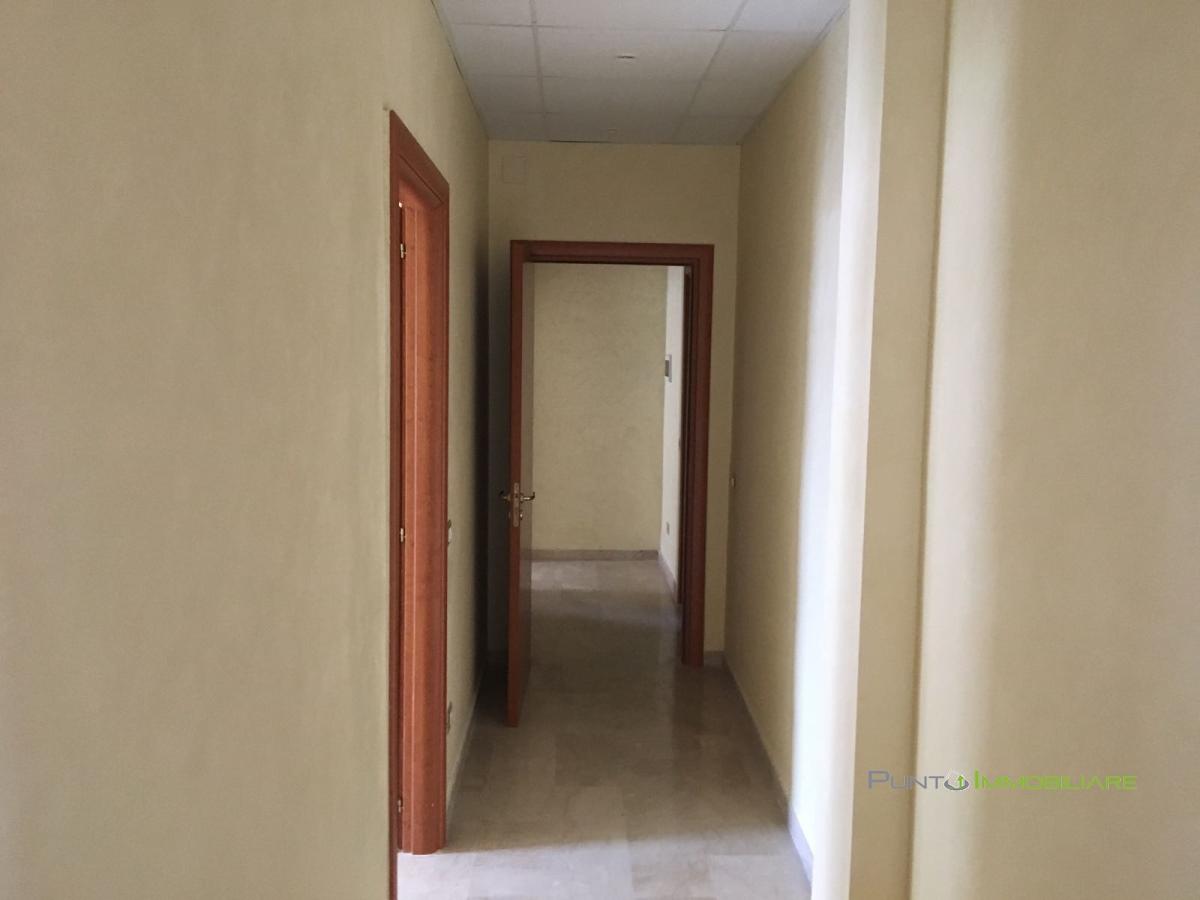 Appartamento affitto Brindisi (BR) - 3 LOCALI - 73 MQ